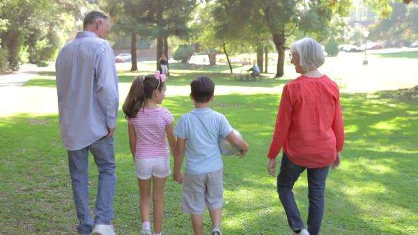 Grandparents with grandchildren walking through summer park with football - view from behind. Royalty-free stock video