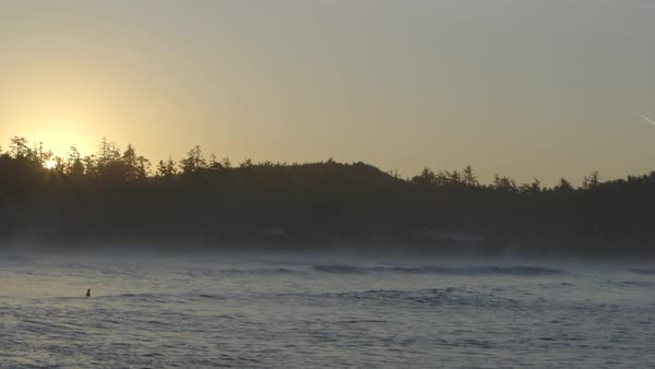 Wide shot of a surfer floating on the water at sunset Royalty-free stock video