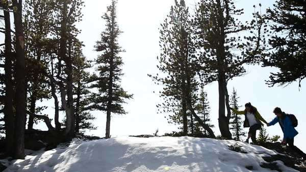 Static very wide shot of people hiking in the snowy mountains Royalty-free stock video