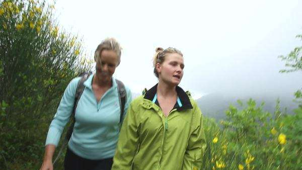 Medium shot of hikers walking in the nature Royalty-free stock video