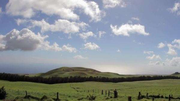 Timelapse of clouds over green Kohala pastures. Royalty-free stock video