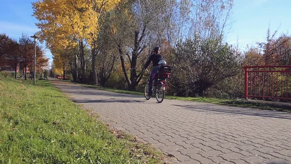 A woman with a child on a bicycle rides by as the camera stands still filming the autumnal park scenery.  Royalty-free stock video