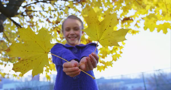 Girl hiding behind the yellow autumn leaves  Royalty-free stock video