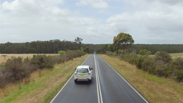 AERIAL CLOSE UP, MOVING FORWARD: White SUV car approaching small truck and driving along straight countryside road surrounded by beautiful lush eucalyptus tree forest and vast green dry meadow field Royalty-free stock video