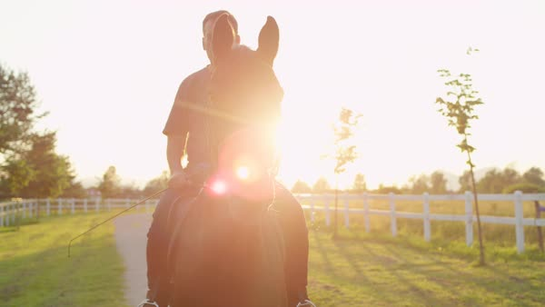 Senior male rider horseback riding beautiful dark bay gelding on sandy footpath at horse ranch Royalty-free stock video
