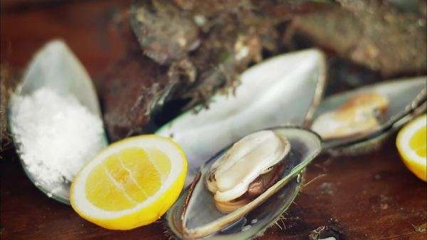 Handheld close up of opened mussels served with lemons Rights-managed stock video