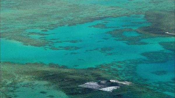 Aerial view showing the water surface and coral reef scenery Rights-managed stock video