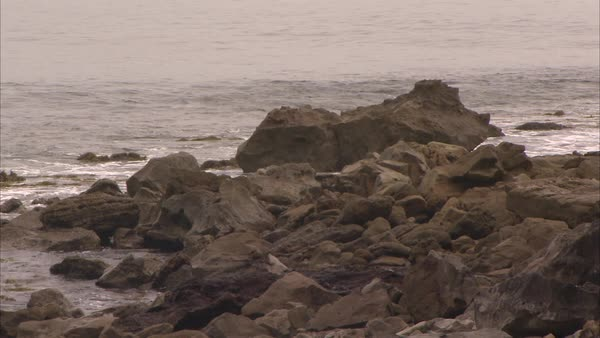 Medium shot of rocks on a coast Rights-managed stock video