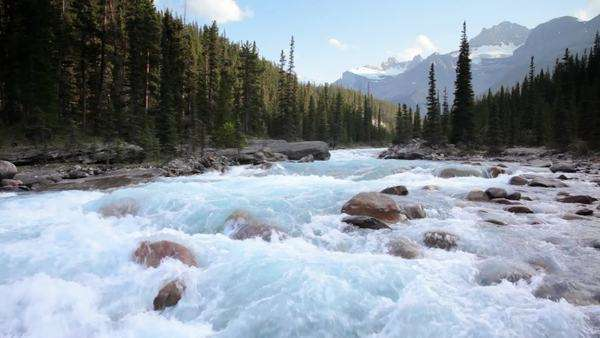 Banff National Park, Canada, Mistaya River with high quality audio included Royalty-free stock video