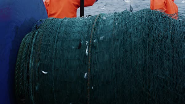 Crew of fishermen work on commercial fishing ship that pulls trawl net Royalty-free stock video