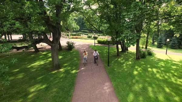 Couple riding bikes in park. Aerial shot. Royalty-free stock video