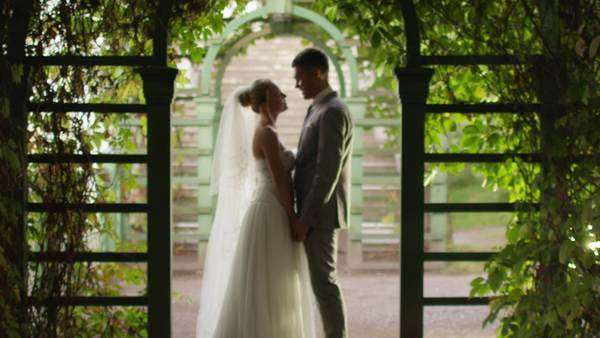 Bride and groom are kissing in a sunny park alley. Royalty-free stock video