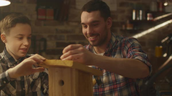 Father and son are making a wooden nesting box in a garage at home. Royalty-free stock video