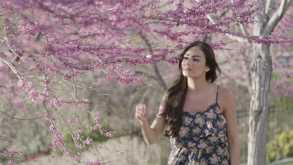 Medium slow motion shot of woman smelling flowers on tree Royalty-free stock video