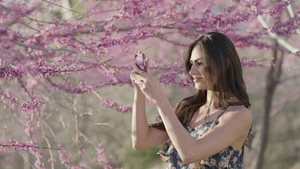Close up slow motion shot of woman photographing flowering trees Royalty-free stock video