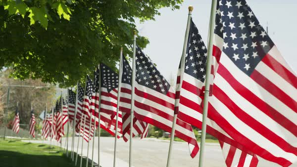 Wide shot of American flags lining street / Payson, Utah, United States Royalty-free stock video