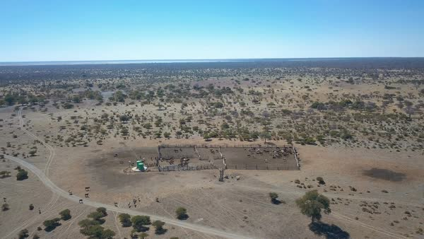 Remote cattle post in the Kalahari with paths leading to livestock in pen aerial shot Royalty-free stock video
