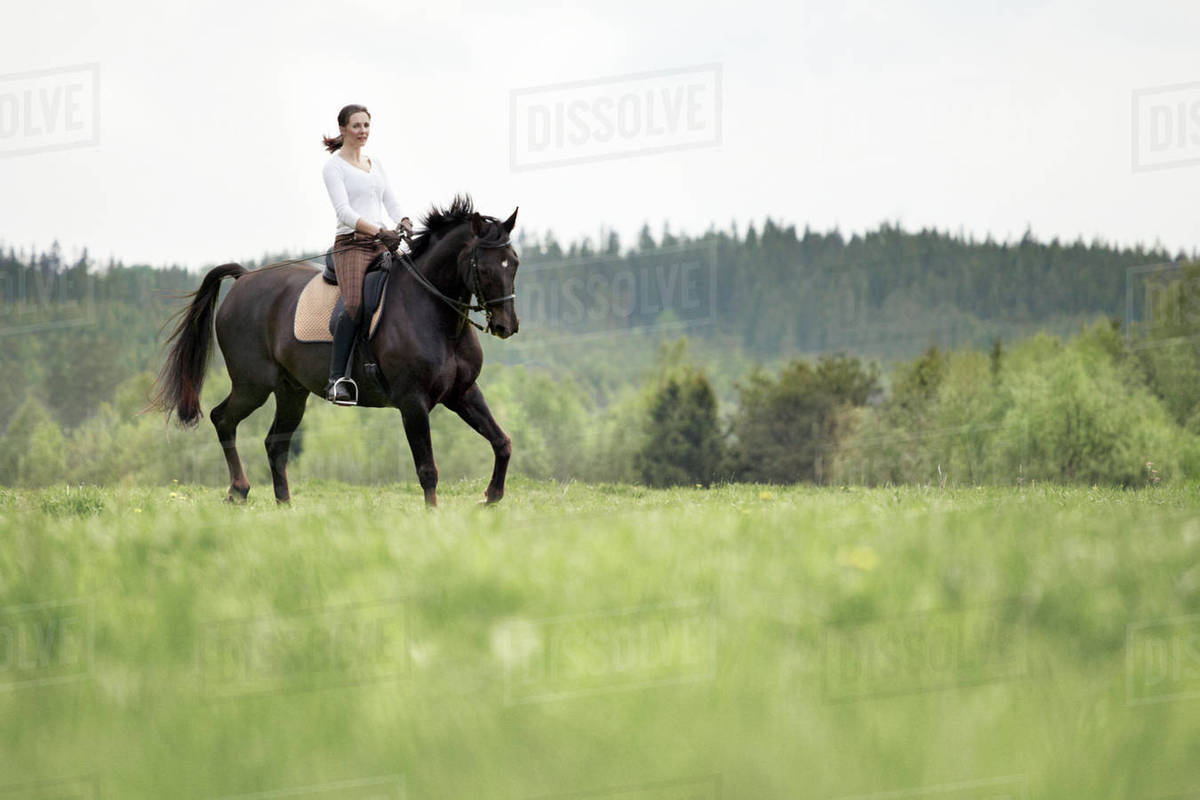 woman horseback riding stock photo dissolve