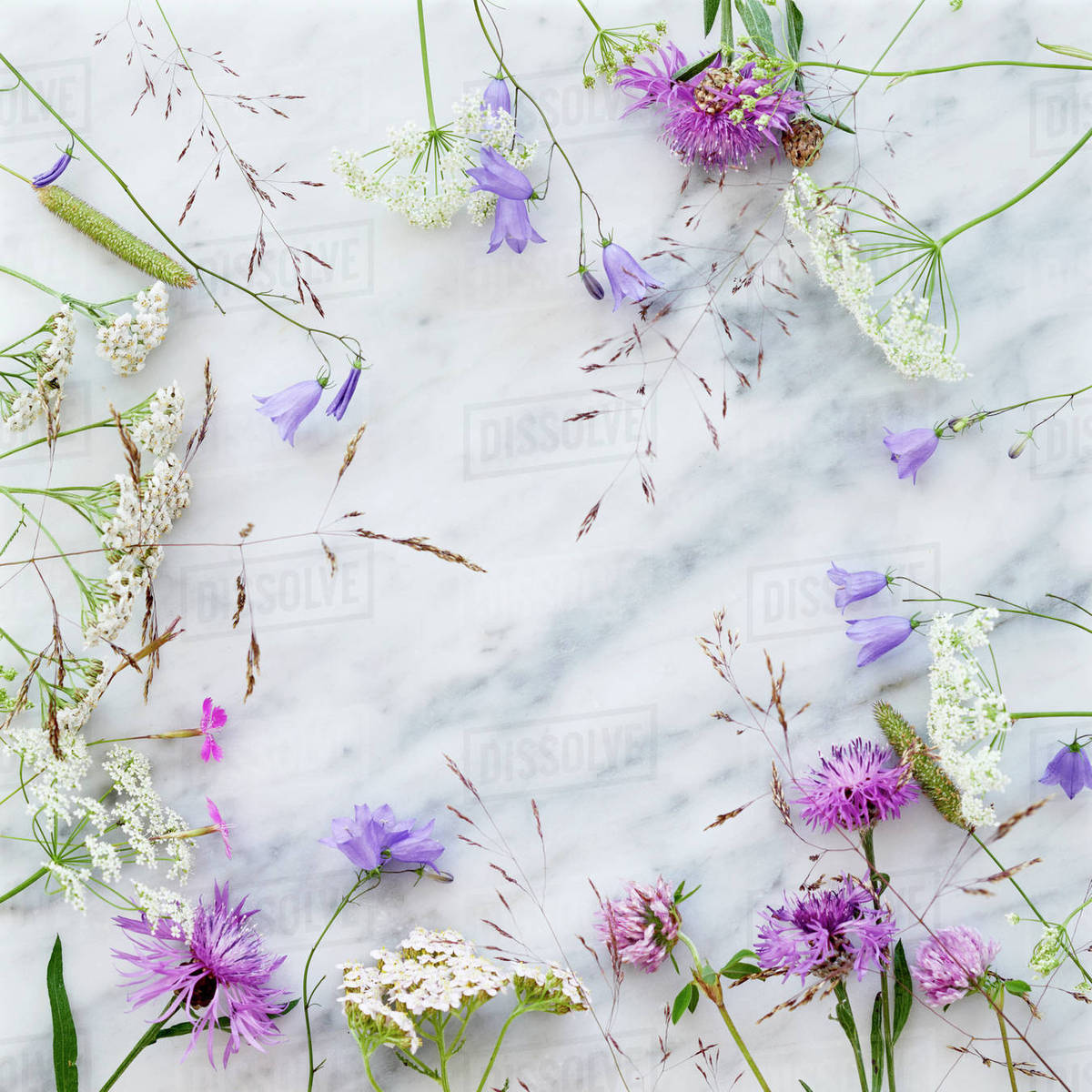 Wildflowers On Marble Background Stock Photo Dissolve