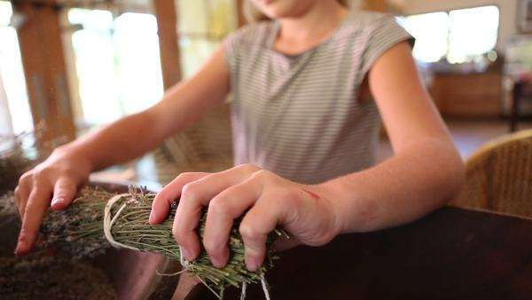 9-year-old girl at home separating lavender buds from their stems, laughing and hamming it up Royalty-free stock video