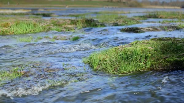 Dolly slow motion shot of moss and grass covered river rapids during spring floods Royalty-free stock video