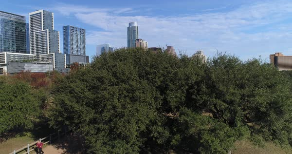 A dramatic rising aerial view revealing the Austin city skyline as seen from Vic Mathias Shores Park on a late Autumn sunny day as a jogger runs on the trails.   Royalty-free stock video