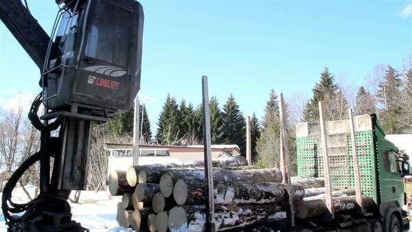 A large crane clipping and transferring big logs - Stock
