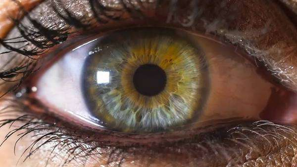 Iris pupil contracting slow motion, female green eye with make up Royalty-free stock video
