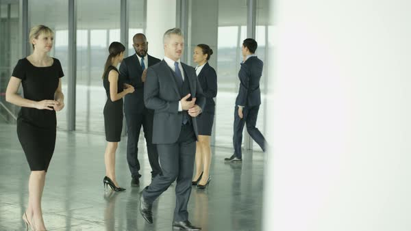 Business people chatting in busy modern office Royalty-free stock video