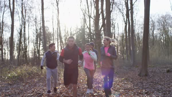 Cheerful runners running along a forest trail and checking fitness with smartwatch. Royalty-free stock video