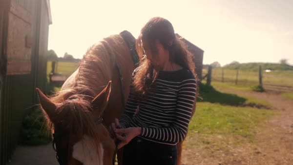 Medium shot of happy young woman harnessing a horse Royalty-free stock video