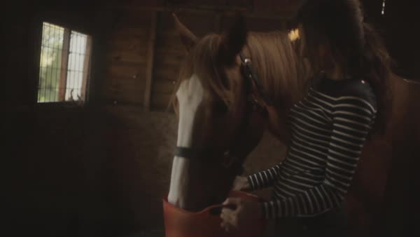 Medium shot of happy young woman feeding horse Royalty-free stock video