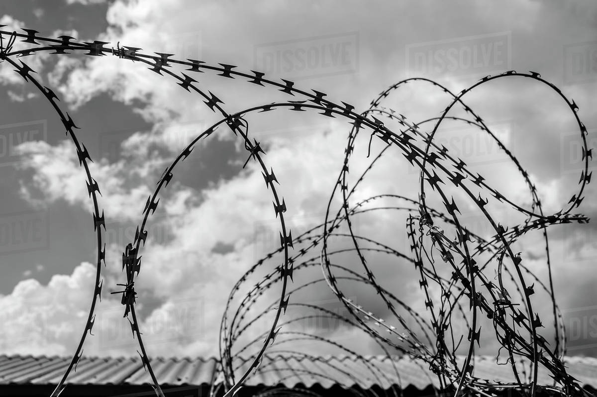 Detail of barbed wire in black and white; Soweto, Gautang, South ...