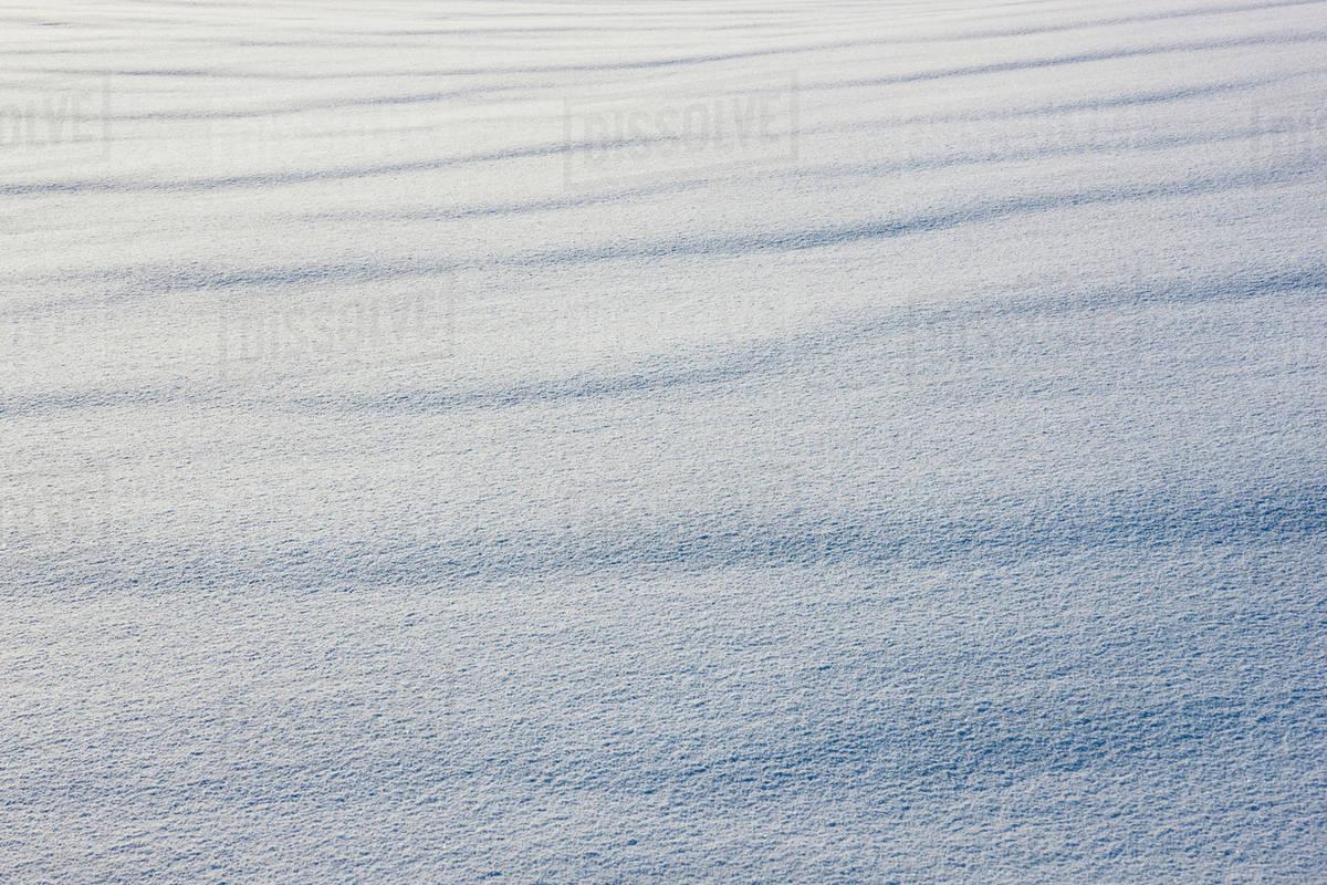 Snow Texture Detail Palmer Alaska United States Of America Stock Photo Dissolve