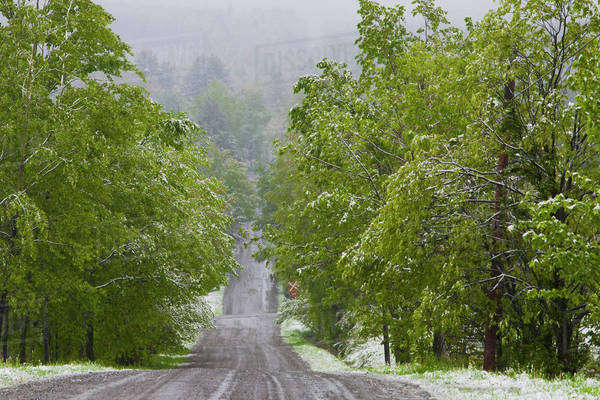 Late spring snowfall on a road;Ville de lac brome quebec canada Royalty-free stock photo