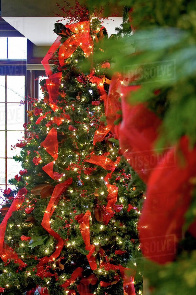 decorated christmas tree with red ribbon and lights canada ontario