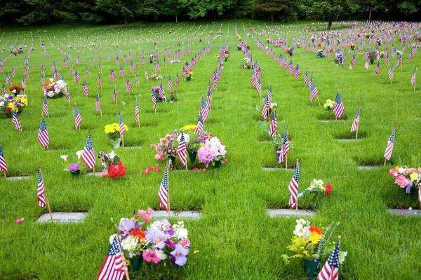 Memorial Flowers And Flags, Graveyard, Oregon, Usa Royalty-free stock photo