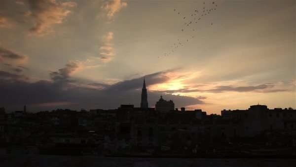 La Havana city scape with the cathedral tower and rooftops at sunset with birds Royalty-free stock video