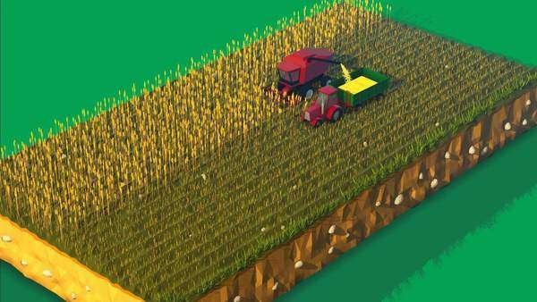 Combine harvester harvesting in agricultural field Royalty-free stock video