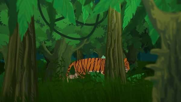 Tiger Walking In Jungle During Day. Royalty-free stock video
