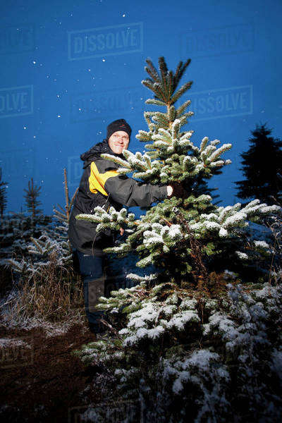 Mid adult man holding tree in cold winter night Royalty-free stock photo