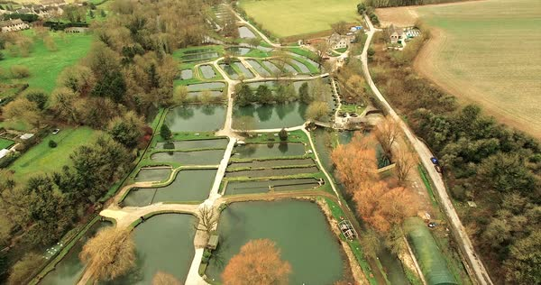 English countryside pond and lakes farm aerial Royalty-free stock video