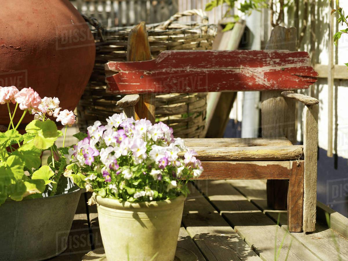 Flowering Pot Plants And Rustic Garden Bench