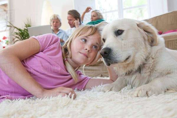 Girl and pet dog lying on carpet, family using laptop in background Royalty-free stock photo