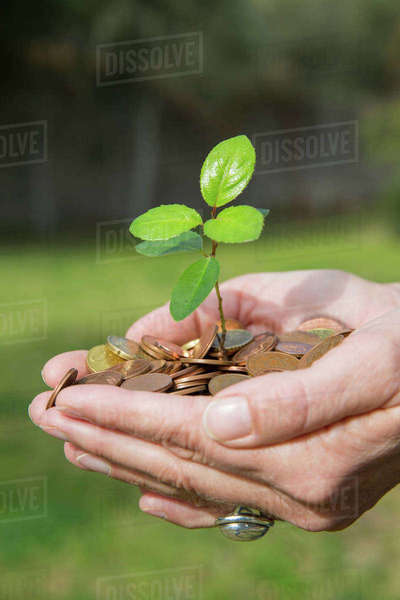 Side view of womans cupped hands holding tree seedling growing from coins Royalty-free stock photo