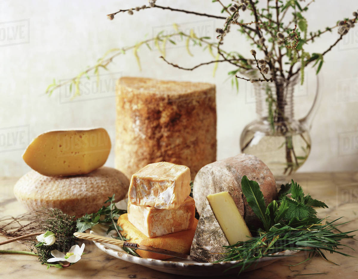 British cheese selection stock photo