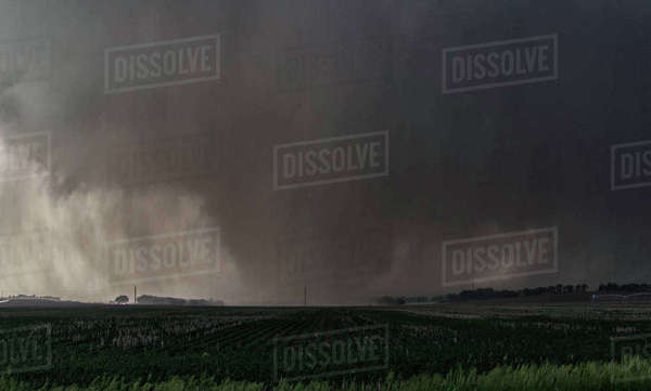 A violent, rain-wrapped wedge tornado rips up farmland in rural Kansas Royalty-free stock photo