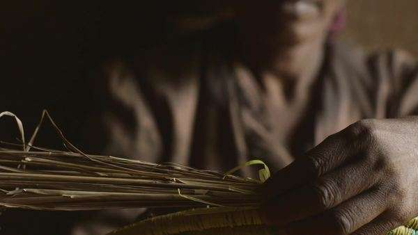 Close-up shot of Ethiopian woman weaving a basket Royalty-free stock video