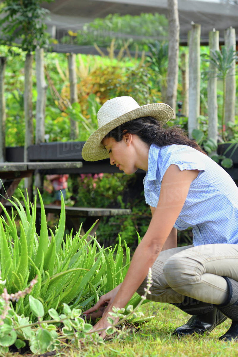 Woman Wearing Straw Hat And Rubber Boots Gardening In Garden
