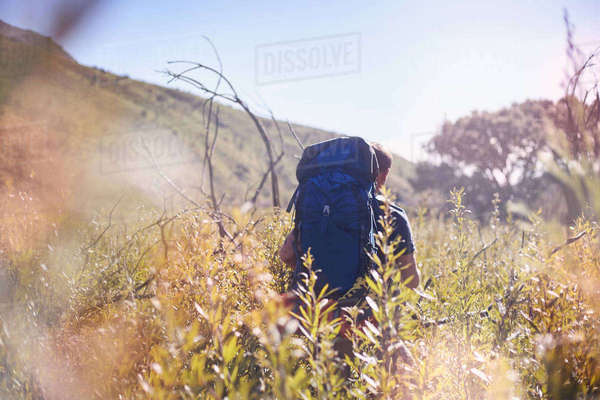 Young man with backpack hiking in sunny field Royalty-free stock photo